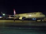 ハピネスさんが、アタテュルク国際空港で撮影したターキッシュ・エアラインズ A321-231の航空フォト(飛行機 写真・画像)