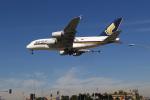 LAX Spotterさんが、ロサンゼルス国際空港で撮影したシンガポール航空 A380-841の航空フォト(写真)