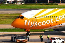 まいけるさんが、ドンムアン空港で撮影したスクート (〜2017) 787-8 Dreamlinerの航空フォト(飛行機 写真・画像)