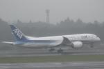 ATOMさんが、成田国際空港で撮影した全日空 787-8 Dreamlinerの航空フォト(写真)