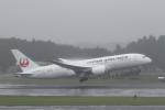 ATOMさんが、成田国際空港で撮影した日本航空 787-8 Dreamlinerの航空フォト(写真)