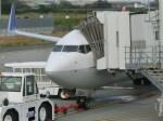 kumagorouさんが、岩国空港で撮影した全日空 737-881の航空フォト(飛行機 写真・画像)