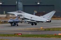 多摩川崎2Kさんが、三沢飛行場で撮影したイギリス空軍 EF-2000 Typhoon FGR4の航空フォト(飛行機 写真・画像)