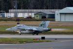 うめやしきさんが、三沢飛行場で撮影したアメリカ海軍 EA-18G Growlerの航空フォト(飛行機 写真・画像)