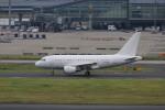 マルさんが、羽田空港で撮影したケイマン諸島企業所有 A318-112 CJ Eliteの航空フォト(写真)