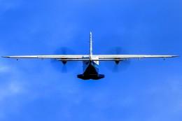 アミーゴさんが、神津島空港で撮影した新中央航空 Do 228-212 NGの航空フォト(飛行機 写真・画像)