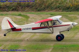Chofu Spotter Ariaさんが、羽生滑空場で撮影した日本個人所有 A-1 Huskyの航空フォト(写真)