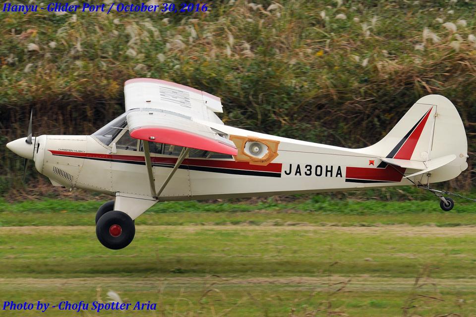 Chofu Spotter Ariaさんの日本個人所有 Christen A-1 Husky (JA30HA) 航空フォト