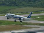おっつんさんが、新石垣空港で撮影した全日空 787-8 Dreamlinerの航空フォト(写真)