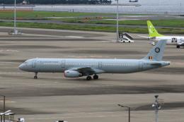 たまさんが、羽田空港で撮影したベルギー空軍 A321-231の航空フォト(飛行機 写真・画像)