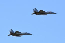 tsubasa0624さんが、入間飛行場で撮影した航空自衛隊 F-15J Eagleの航空フォト(写真)