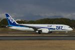 Scotchさんが、伊丹空港で撮影した全日空 787-8 Dreamlinerの航空フォト(飛行機 写真・画像)