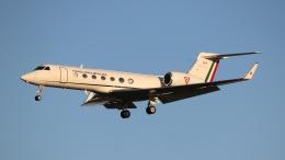 raichanさんが、成田国際空港で撮影したメキシコ空軍 G-V-SP Gulfstream G550の航空フォト(飛行機 写真・画像)