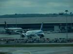 エアキヨさんが、クアラルンプール国際空港で撮影した全日空 787-8 Dreamlinerの航空フォト(写真)