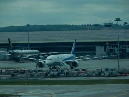 エアキヨさんが、クアラルンプール国際空港で撮影した全日空 787-8 Dreamlinerの航空フォト(飛行機 写真・画像)