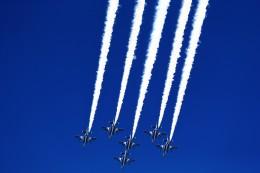 T.Sazenさんが、奈良基地で撮影した航空自衛隊 T-4の航空フォト(飛行機 写真・画像)