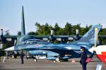 パンダさんが、入間飛行場で撮影した航空自衛隊 F-2Bの航空フォト(写真)