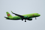 coconaruさんが、成田国際空港で撮影したS7航空 A320-214の航空フォト(写真)