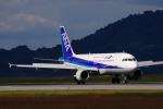 サボリーマンさんが、松山空港で撮影した全日空 A320-211の航空フォト(飛行機 写真・画像)