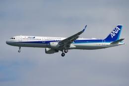 zettaishinさんが、羽田空港で撮影した全日空 A321-211の航空フォト(飛行機 写真・画像)