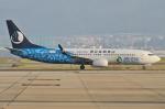 Wings Flapさんが、関西国際空港で撮影した山東航空 737-85Nの航空フォト(写真)