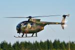 パンダさんが、入間飛行場で撮影した陸上自衛隊 OH-6Dの航空フォト(写真)