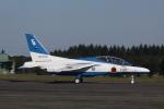 TRdenさんが、入間飛行場で撮影した航空自衛隊 T-4の航空フォト(写真)