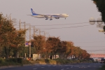 RUNDY!さんが、羽田空港で撮影した全日空 777-381/ERの航空フォト(写真)