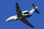 多楽さんが、茨城空港で撮影した航空自衛隊 U-125A(Hawker 800)の航空フォト(写真)