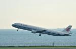 Dojalanaさんが、羽田空港で撮影した中国国際航空 A321-213の航空フォト(写真)