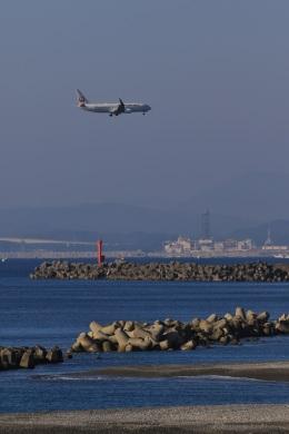 Ken-Tさんが、高知空港で撮影した日本航空 737-846の航空フォト(写真)