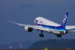 サボリーマンさんが、松山空港で撮影した全日空 787-8 Dreamlinerの航空フォト(飛行機 写真・画像)