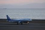 TRdenさんが、中部国際空港で撮影した全日空 A320-211の航空フォト(写真)