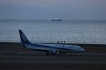 TRdenさんが、中部国際空港で撮影した全日空 737-881の航空フォト(写真)