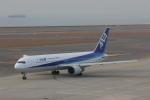TRdenさんが、中部国際空港で撮影した全日空 767-381の航空フォト(写真)