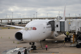JA1118Dさんが、ダラス・フォートワース国際空港で撮影した日本航空 787-8 Dreamlinerの航空フォト(飛行機 写真・画像)