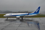 tsubasa0624さんが、静岡空港で撮影した全日空 737-881の航空フォト(飛行機 写真・画像)