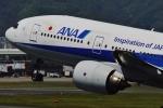 ひめまどんなさんが、伊丹空港で撮影した全日空 777-281の航空フォト(飛行機 写真・画像)