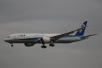 チャッピー・シミズさんが、成田国際空港で撮影した全日空 787-9の航空フォト(写真)