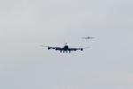 Gouei Changeさんが、新千歳空港で撮影したエバー航空 747-45Eの航空フォト(写真)