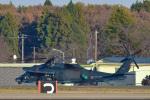パンダさんが、茨城空港で撮影した航空自衛隊 UH-60Jの航空フォト(写真)