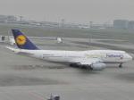ANA STARALLIANCE 新潟さんが、羽田空港で撮影したルフトハンザドイツ航空 747-830の航空フォト(写真)