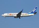 voyagerさんが、羽田空港で撮影した全日空 737-881の航空フォト(写真)