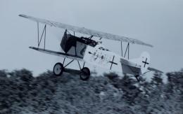TKOさんが、オールド・ラインベック飛行場で撮影したアメリカ個人所有 Fokkerの航空フォト(飛行機 写真・画像)