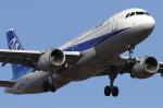 nob24kenさんが、新千歳空港で撮影した全日空 A320-211の航空フォト(写真)