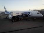 bellevueさんが、成田国際空港で撮影した全日空 787-8 Dreamlinerの航空フォト(写真)
