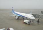 anagumaさんが、広島空港で撮影した全日空 A321-211の航空フォト(写真)