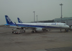 anagumaさんが、羽田空港で撮影した全日空 A321-211の航空フォト(写真)
