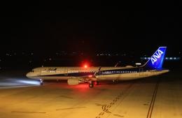 KCZfunさんが、高知空港で撮影した全日空 A321-211の航空フォト(飛行機 写真・画像)
