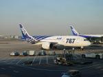 さすけさんが、北京首都国際空港で撮影した全日空 787-8 Dreamlinerの航空フォト(写真)